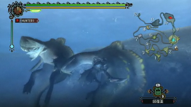 monster-hunter-tri-wii-screenshot.jpg